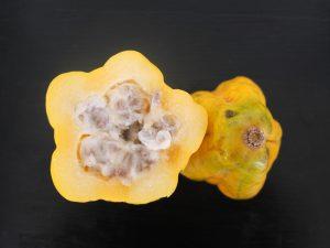 Fruta Exótica la papaya
