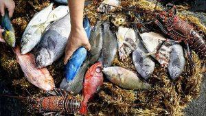 comida-tipica-de-isla-de-pascua1-pescados